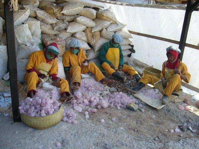 MadagascarAugust2007208.jpg