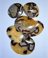 Septarie Seifensteine (jumbo)